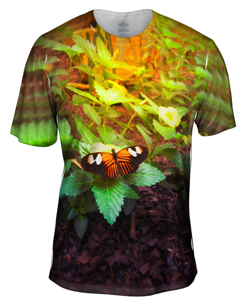 Morning Butterfly Mens T-Shirt