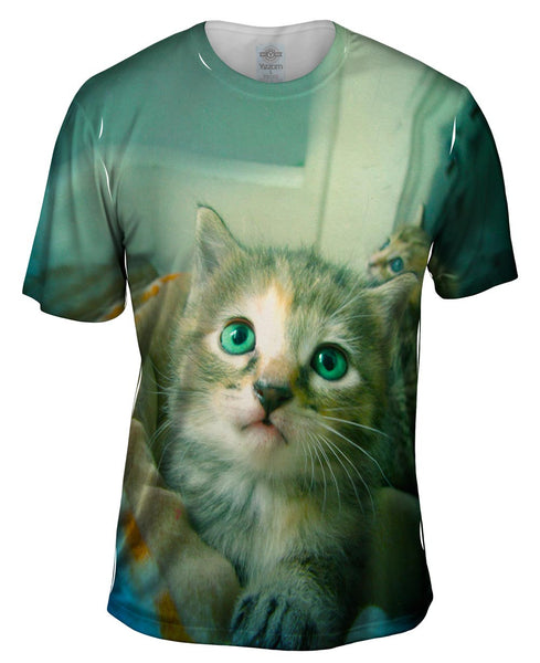 Door Way Kitten Mens T-Shirt