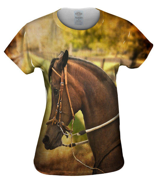 Paso Fino Lord Womens Top