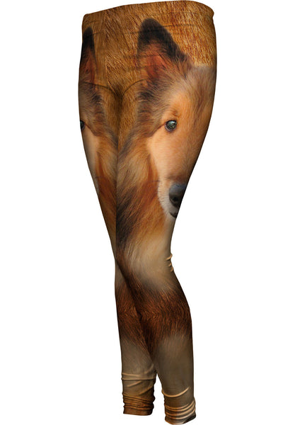 Adorable Collie Face Womens Leggings