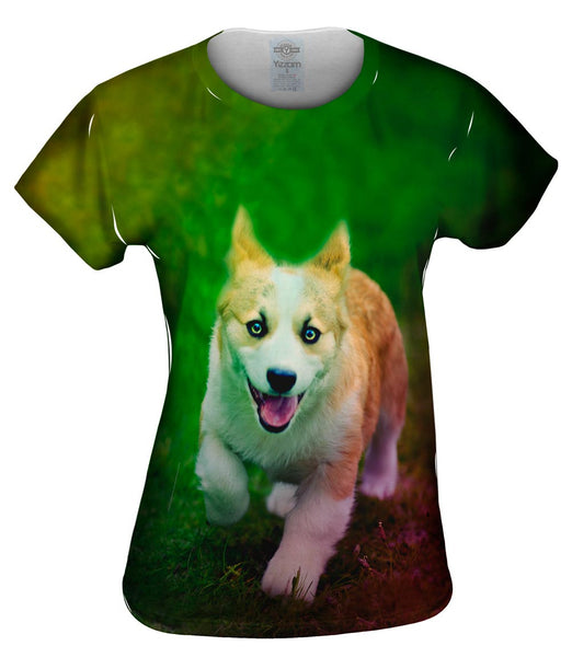 Corgi Run Puppy Womens Top