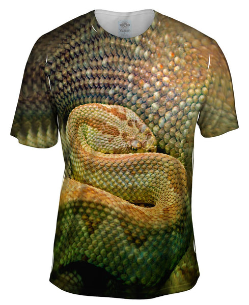 Watchful Rattle Snake Mens T-Shirt