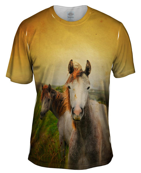 Duo Paint Horses Mens T-Shirt