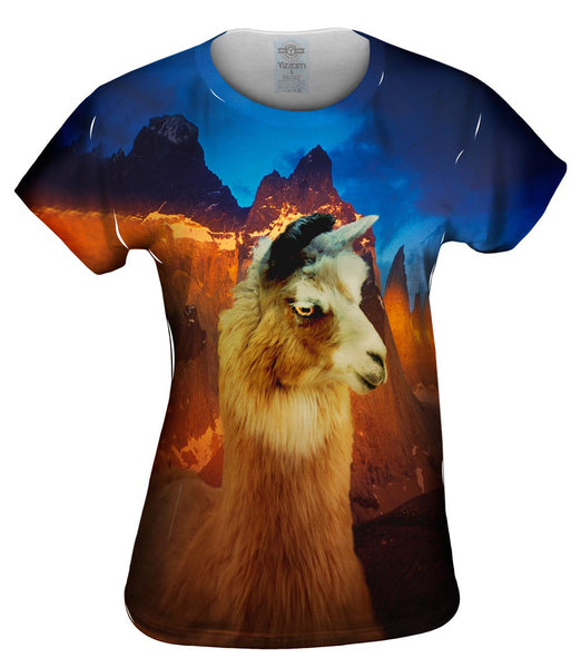 Andes Llama Sunset Womens Top