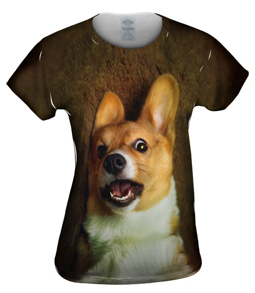 OMG Welsh Corgi Womens Top