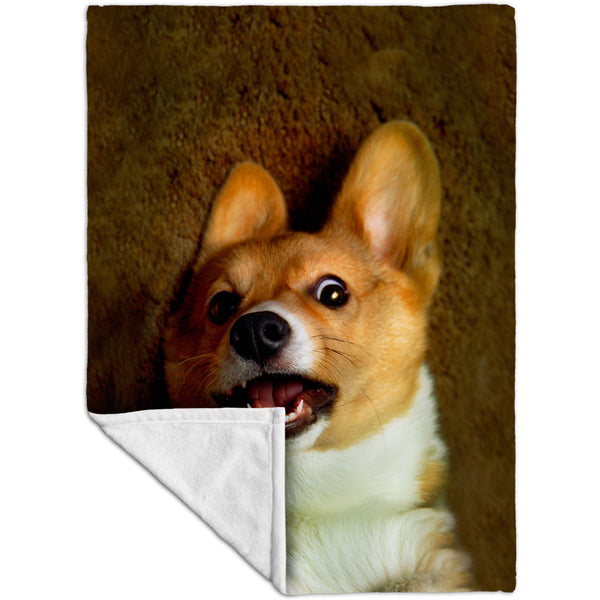 OMG Welsh Corgi Fleece Blanket