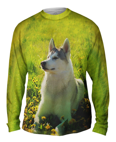 Siberian Husky Fields Mens Long Sleeve
