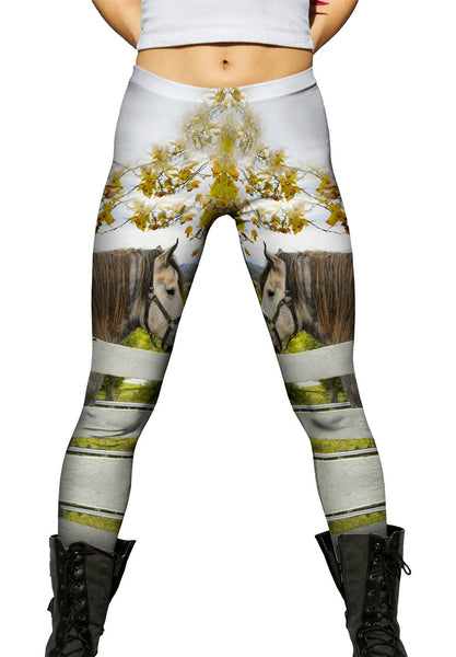 Horses At Fence Womens Leggings