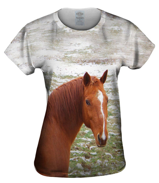 Horse Looking Back Womens Top