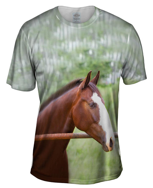 Horse At Rest Mens T-Shirt