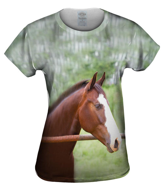 Horse At Rest Womens Top