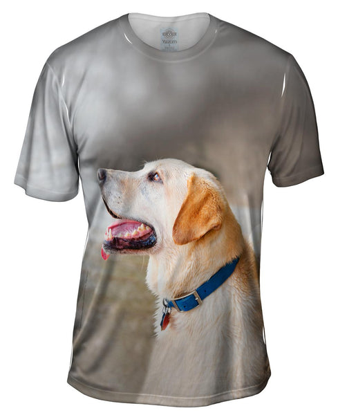 Doggy Looks Up Mens T-Shirt