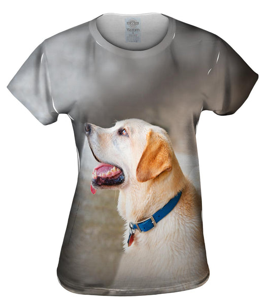 Doggy Looks Up Womens Top