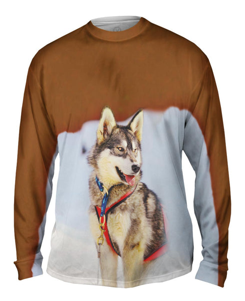 Sledding Husky Mens Long Sleeve