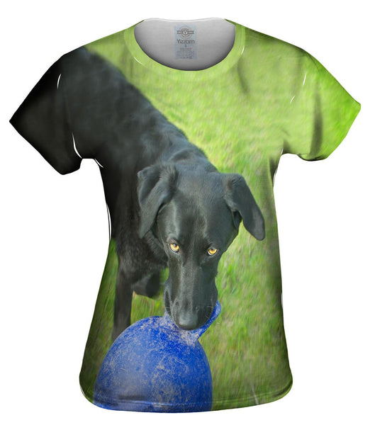 Black Lab And His Ball Womens Top