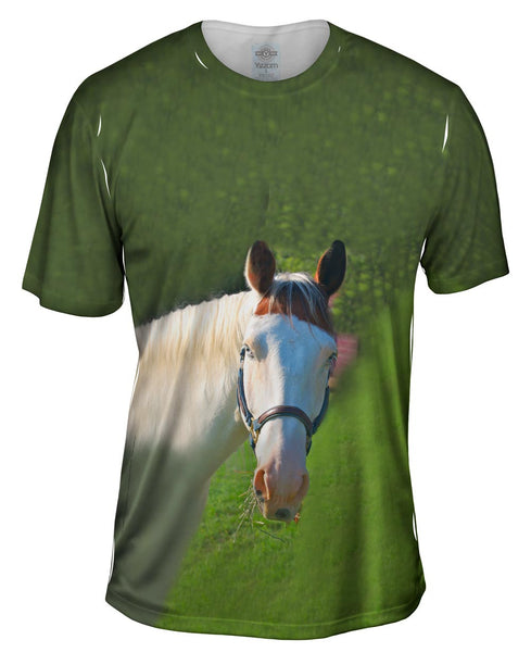 Paso Fino With Spunk Mens T-Shirt