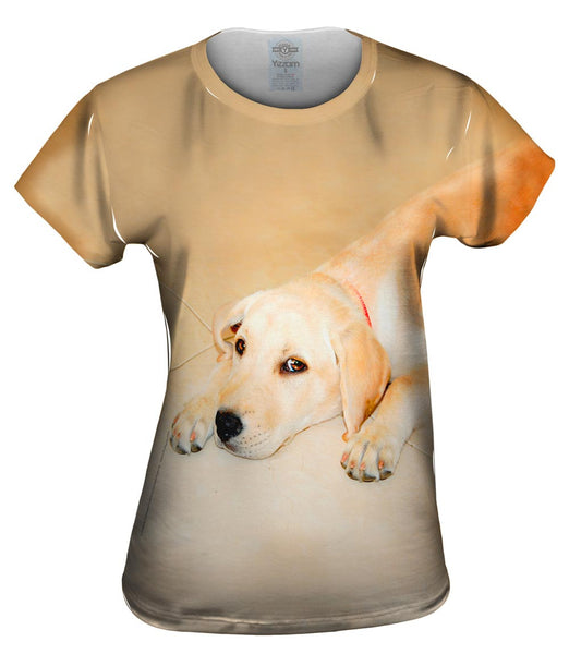 Golden Lab Cooling Off Womens Top