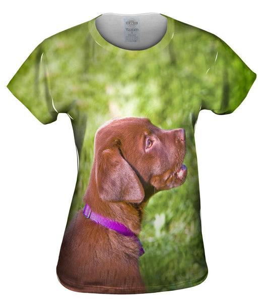 Young Chocolate Lab Womens Top
