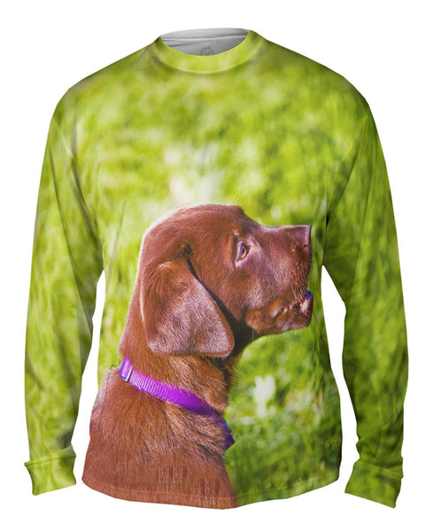 Young Chocolate Lab Mens Long Sleeve
