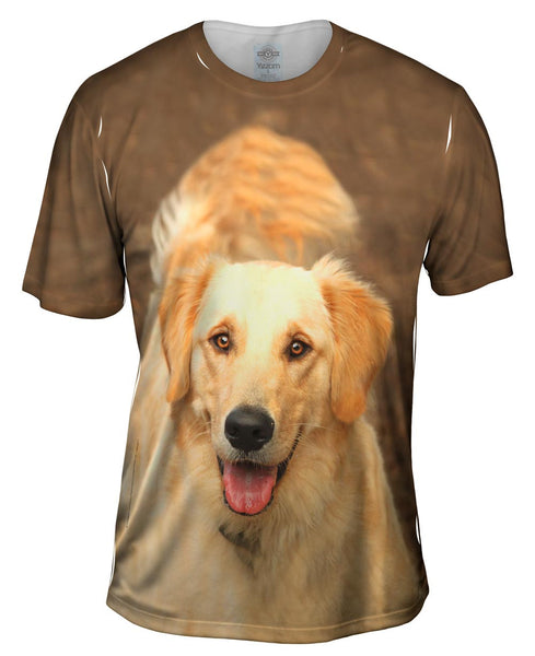 Fluffy Tailed Golden Lab Mens T-Shirt