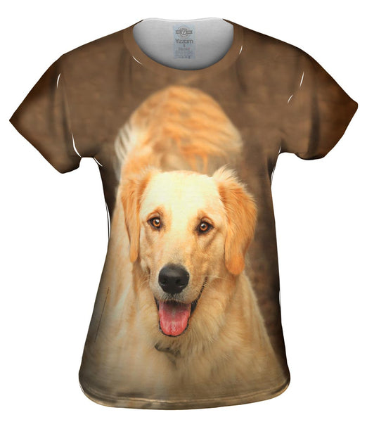 Fluffy Tailed Golden Lab Womens Top