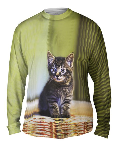 Cute Kitten Mens Long Sleeve