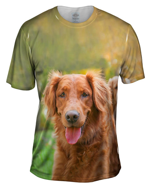 Shaggy Eared Golden Lab Mens T-Shirt