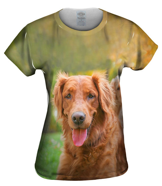 Shaggy Eared Golden Lab Womens Top