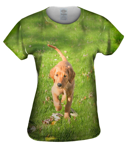 Golden Lab Kicking Leaves Womens Top