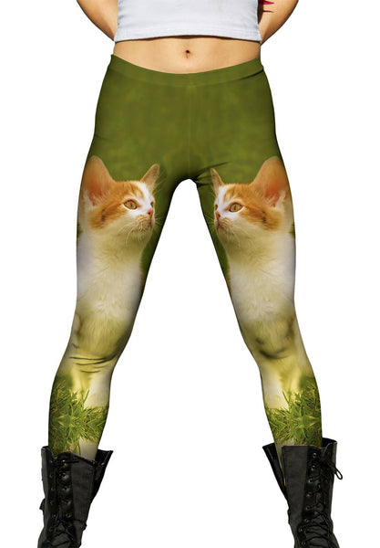 Proud Kitty Cat March Womens Leggings