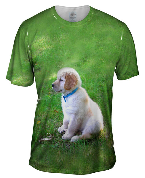 Golden Lab Puppy In Thought Mens T-Shirt