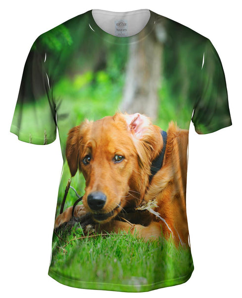 Golden Lab Lost Bone Mens T-Shirt