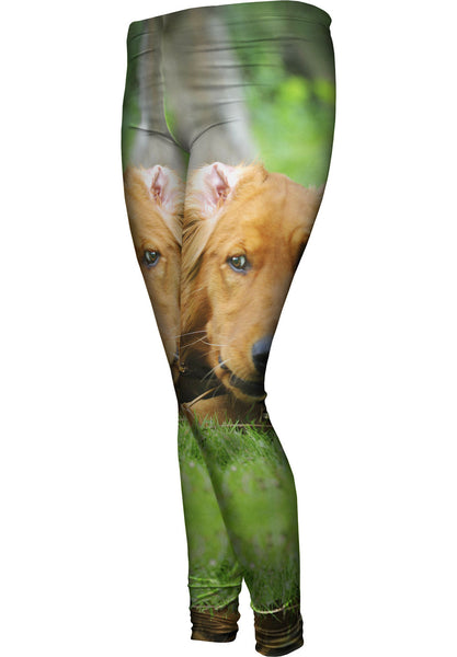 Golden Lab Lost Bone Womens Leggings