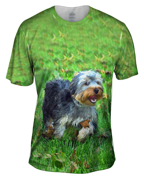 Curly Haired Yorkie Running Mens T-Shirt