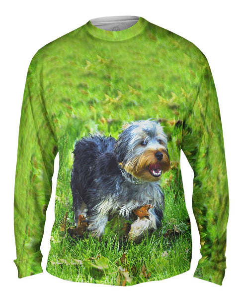 Curly Haired Yorkie Running Mens Long Sleeve