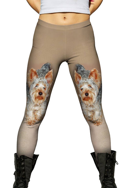 Yorkie Carpet Walk Womens Leggings