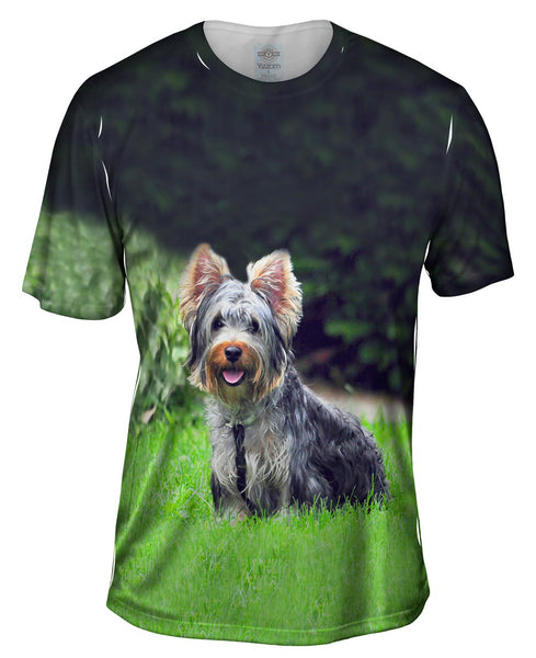 Long Hair Yorkie Loves The Yard Mens T-Shirt