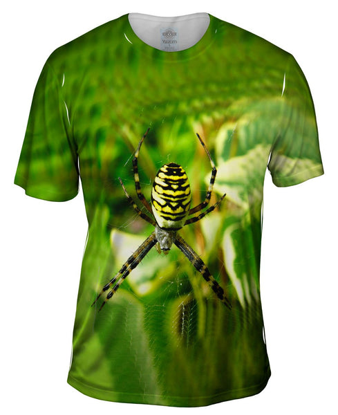 Wasp Spider At Rest Mens T-Shirt