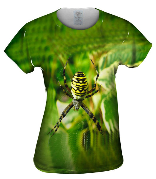 Wasp Spider At Rest Womens Top