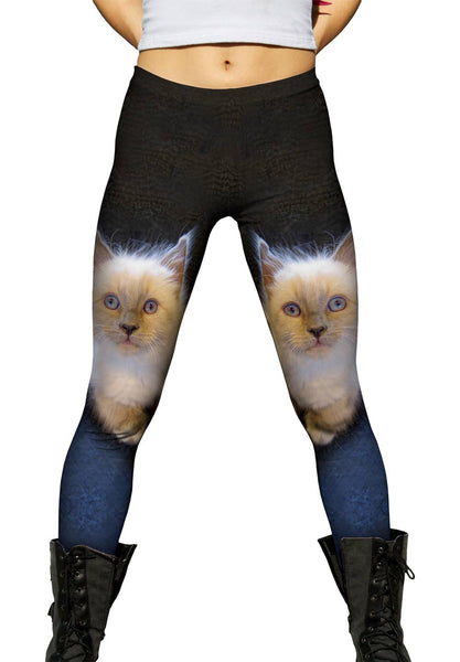 Fluffy Kitty Cat Stare Womens Leggings