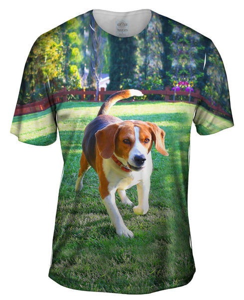 Beagle In Action Mens T-Shirt