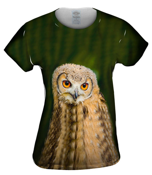 Baby Owl Ponder Womens Top