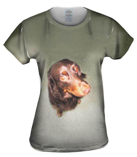 Long Haired Dachshund Glare Womens Top