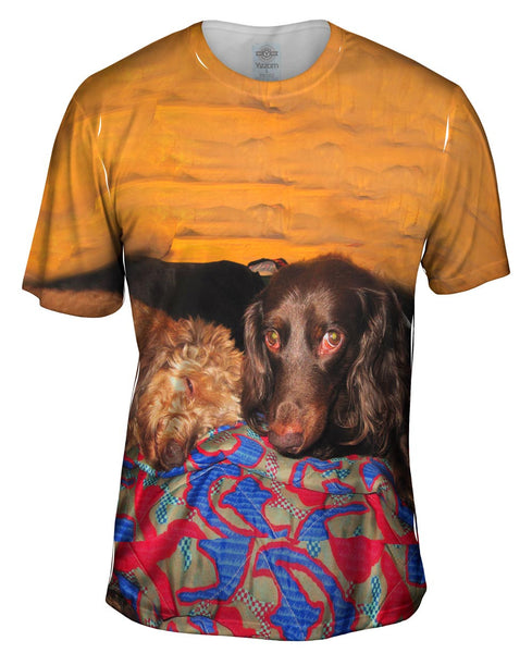 Dachshund Nap Time Mens T-Shirt