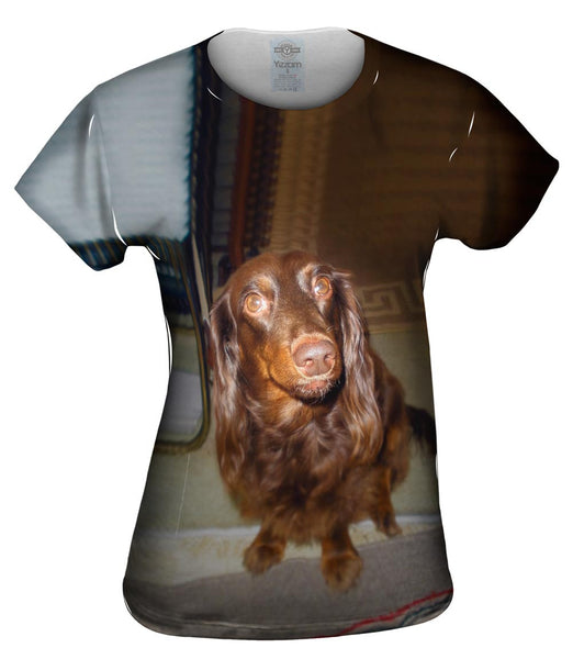 Careful Chocolate Dachshund Womens Top