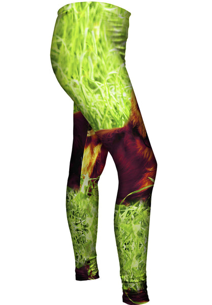 Dachshund In Grass Womens Leggings