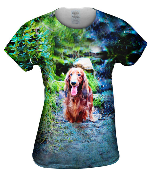 Dachshund In Forest Womens Top