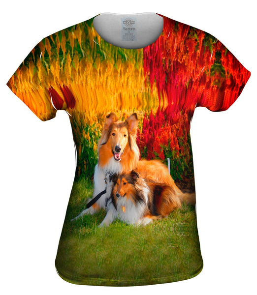 Clever Sitting Collies Womens Top