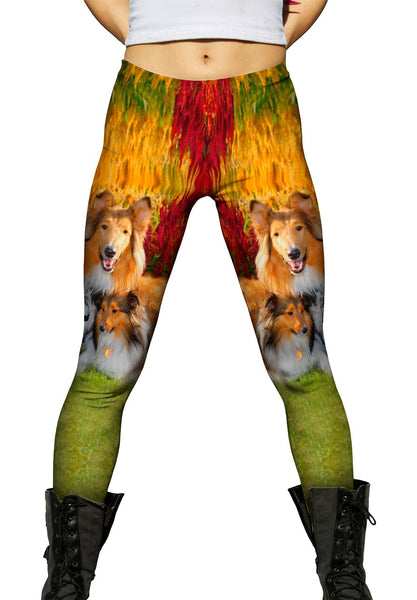 Clever Sitting Collies Womens Leggings