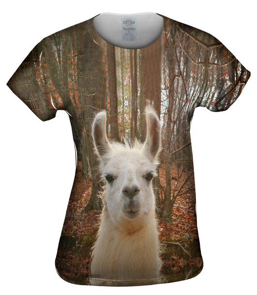 You Don_#_T Know Llama Womens Top